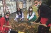 Ученици и учители засадиха райски ябълки и цветя в опитното стопанство и двора на гимназията в Гоце Делчев