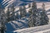 Сняг, студ и силен вятър на места във вторник