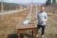Зам. директорът на Института по земеделие в Кюстендил Д. Сотиров: Студът няма да навреди на овошките, дори е добре да продължи още малко, по-опасно е затоплянето