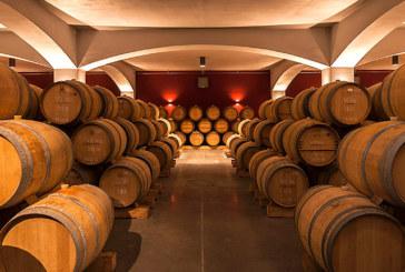 Роднини на босовете на ВИС правят модерна винарна в Кресна за 100 000 литра годишно