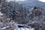 Студена събота с превалявания от сняг