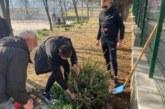 Ученици озеленяват двора на любимото си училище