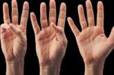 Линиите на дланите имат важна функция