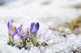 Сняг и дъжд от утре, затопляне до 20 градуса през уикенда
