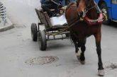 Инцидент в Белица! Каруца помете 87-г. жена