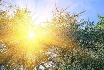 Слънчево с температури до 17°
