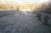 Надеждата за добра реколта унищожена! Слана като сняг попари овошки и разсад