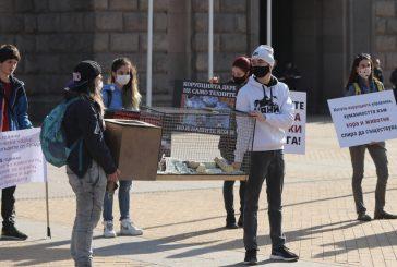 Протест под прозорците на властта поиска затваряне на фермата за норки