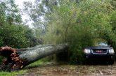 Мощна буря удари Букурещ