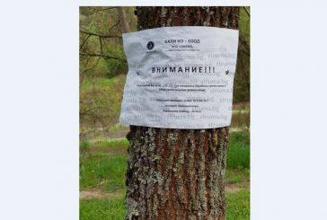 Благоевградчани: Кога е извършено обявеното пръскане срещу насекоми, след като кварталните градинки са буренясали...