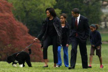 Почина Бо - кучето на Барак Обама и звезда на Белия дом