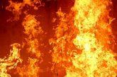 Нов пожар пламна в изгорелите складове в Кресна, щетите са огромни, всичко е сринато със земята, заяви бащата на футболиста К. Десподов - Васил