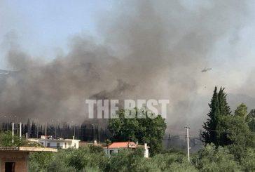 Горски пожар в Гърция навлезе в населени райони и погълна къщи