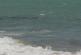 Турист се удави край Несебър