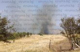 МВР с информация за пожара край Бучино