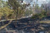 Три вили, пчелин и кола изгоряха при пожар в Ковачевско