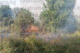 Доброволци и горски служители помагат в гасенето на пожара над Беренде